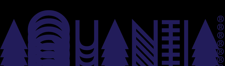 Aquantia Logo 2Q10